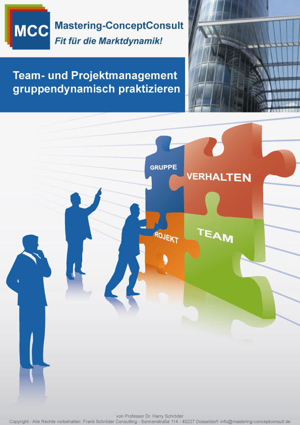 Team- Projektmanagement eBook